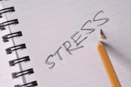 Peder Bent Ahrens - Stress and job search